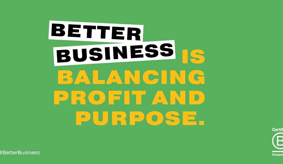 Building Better Business Balancing Profit and Purpose